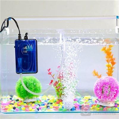 鱼缸增氧机怎么安装?方法这里有介绍